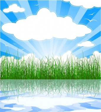 Sunny summer background with grass, wate