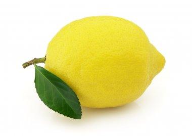 "Картина, постер, плакат, фотообои ""спелый лимон "", артикул 2422249"