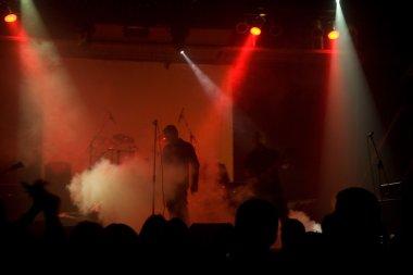 Rock concert, blurred unrecognizable mus