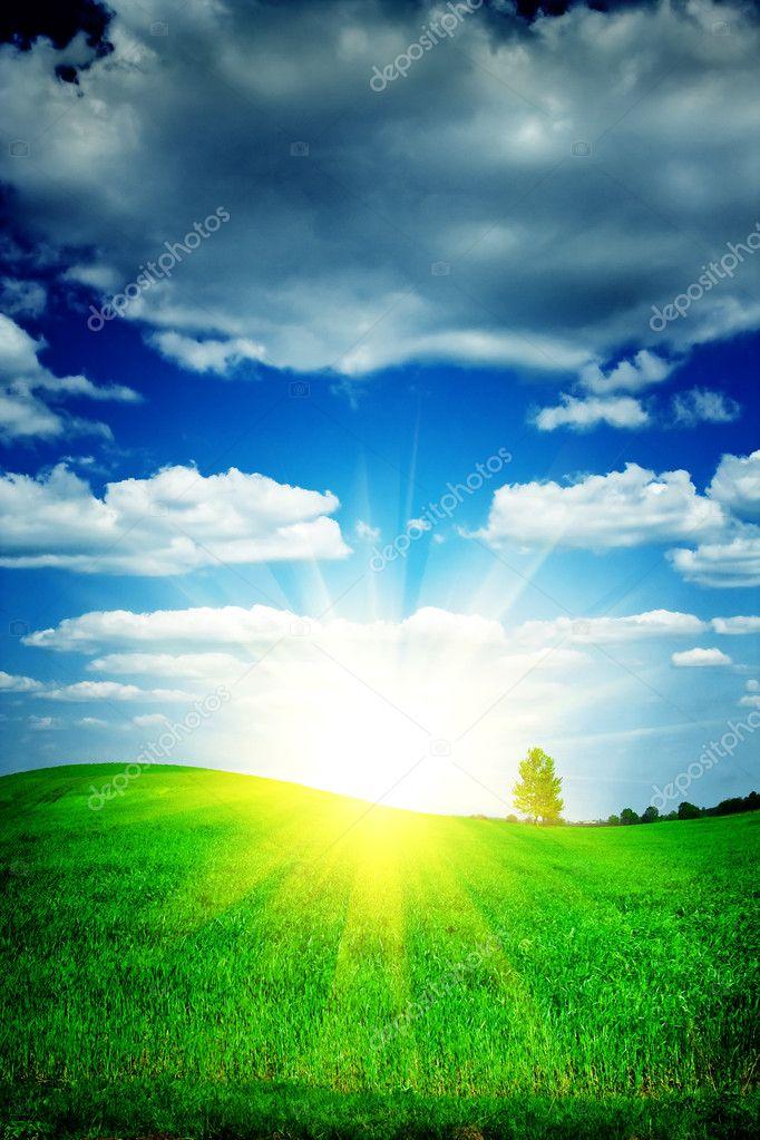 Sunrise on a green field