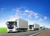 Fotografie Caravan of white trucks on highway
