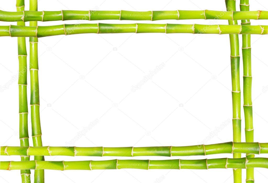 Bambus-Rahmen — Stockfoto © Pakhnyushchyy #1595213