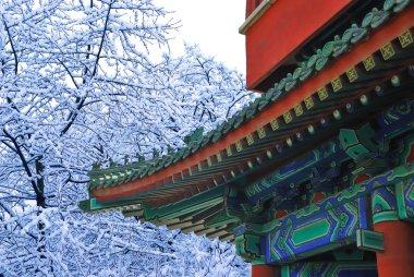 Asian temple in winter garden