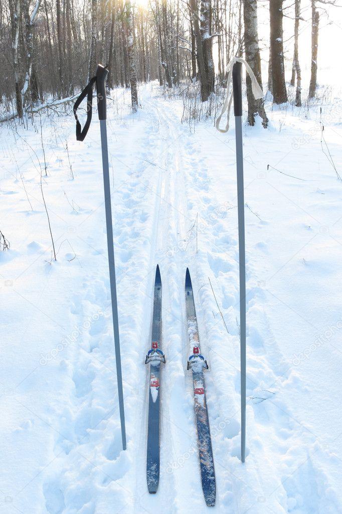 Туристические лыжи и лыжные палки — Стоковое фото © uatp12  1530634 dc6e798a344