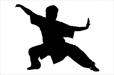 Karateka's black silhouette