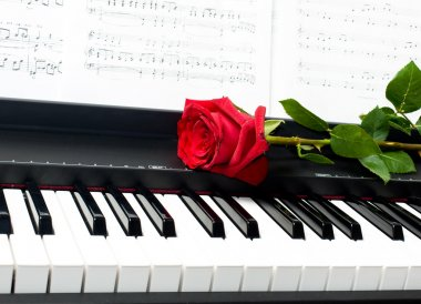 Romantic concept - red rose on piano key