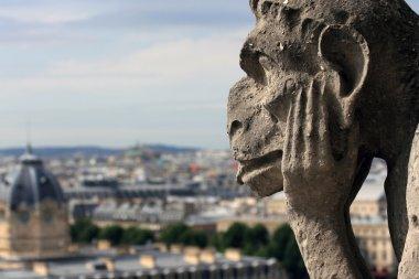 Monster on Notre Dame de Paris