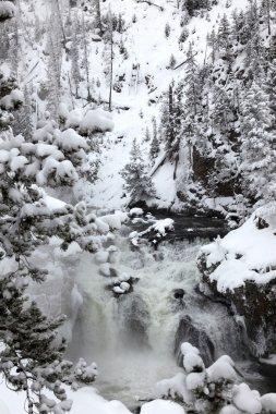 Winter season at falls of Yellowstone Na