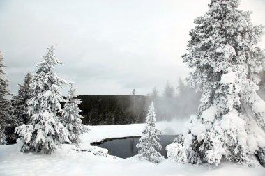 Winter season at lake of Yellowstone Nat