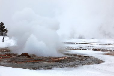 Hot Yellowstone geysers in cold winter