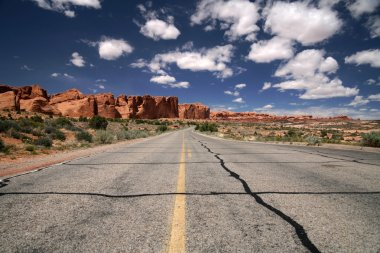 Road in the desert, Arches National Park