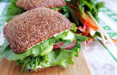 Healthy rye bread sandwich with radish a