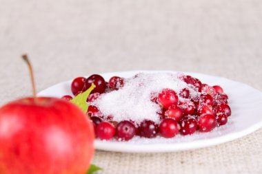Plate of a cowberry sprinkled with sugar