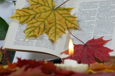 The book in autumn leaves with a candle