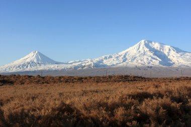 Ararat in the morning