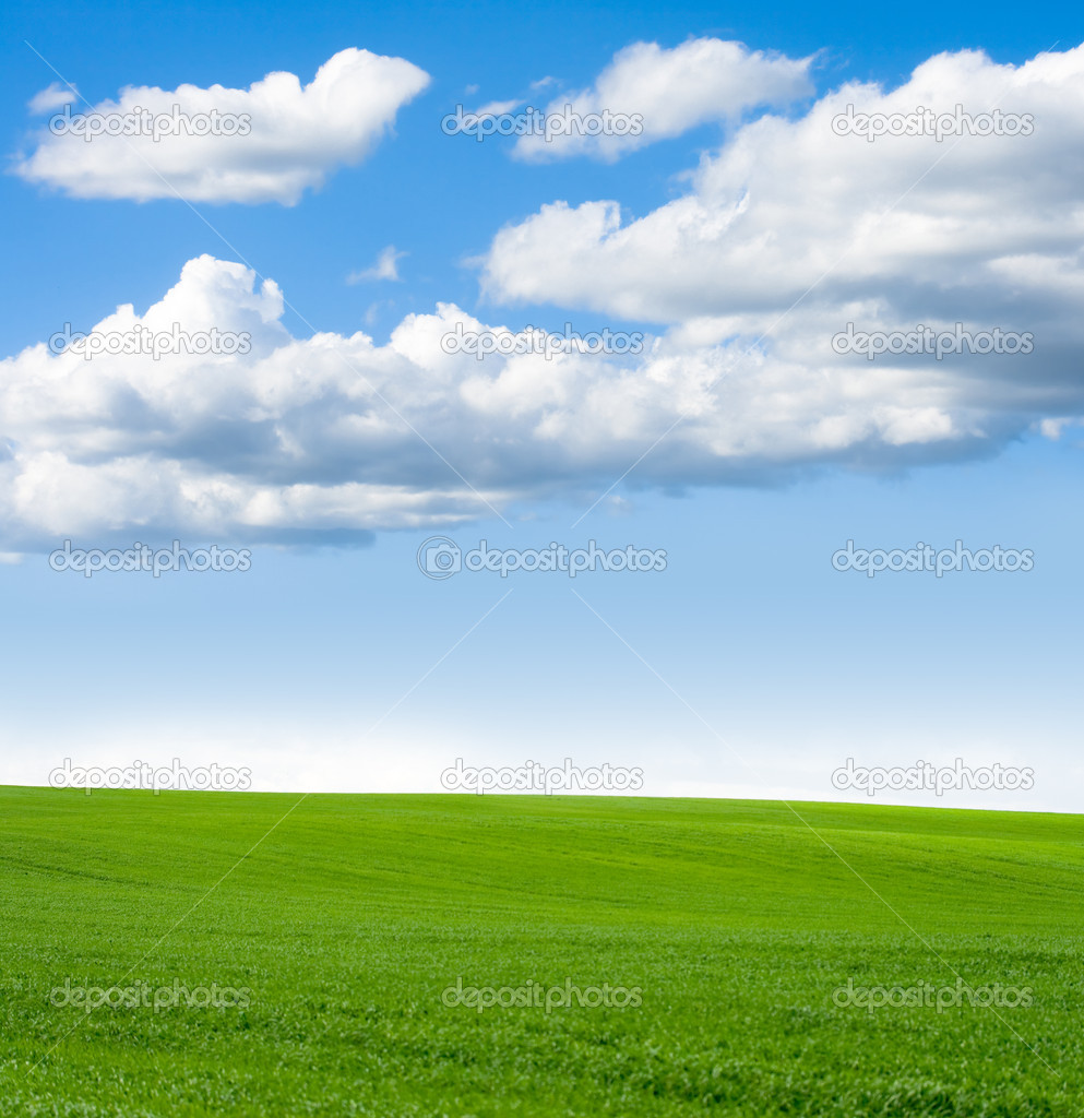 Windows xp фон