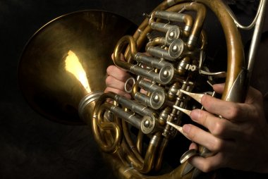 Old French Horn closeup