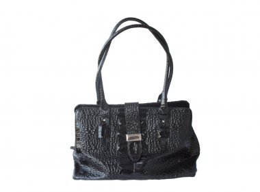 Woman's City Bag