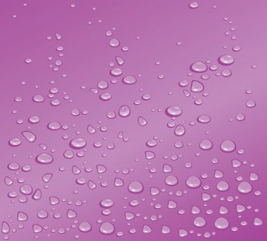 Water drops.Vector illustration