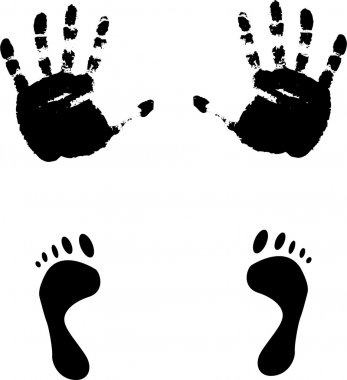 Colour prints of feet and hands.Vector i
