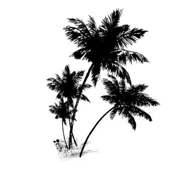 Four palms of black . Vector illustratio