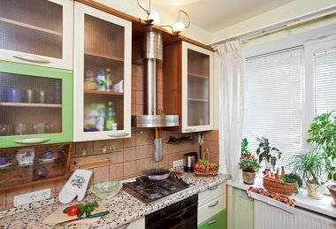 Part of Green Kitchen interior with many