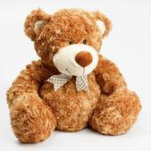 Fotografie Furry teddy bear
