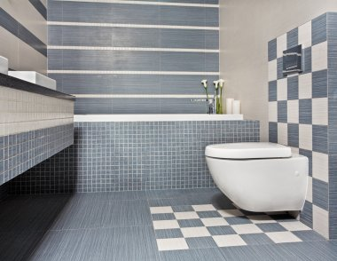 Modern bathroom with toilet and mosaic