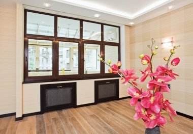 Empty living room interior with flower