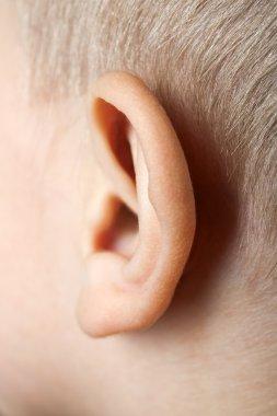 Ear macro
