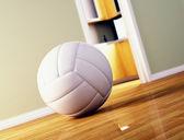 Volley ball on wood floor