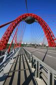 Malebné most, Moskva, Rusko