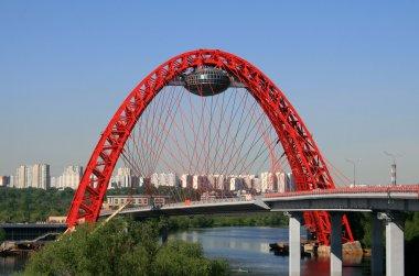 Picturesque bridge, Moscow, Russia