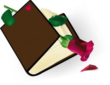 The old book with a rose