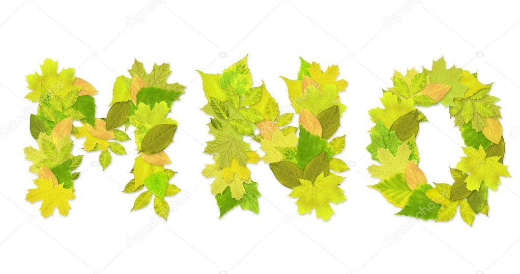 alfabeto - Letras con un verde hojas — Fotos de Stock © frenta #2009972