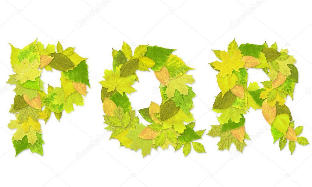 alfabeto - Letras con un verde hojas — Fotos de Stock © frenta #2010010