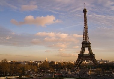 The Eiffel Tower and the Iena bridge