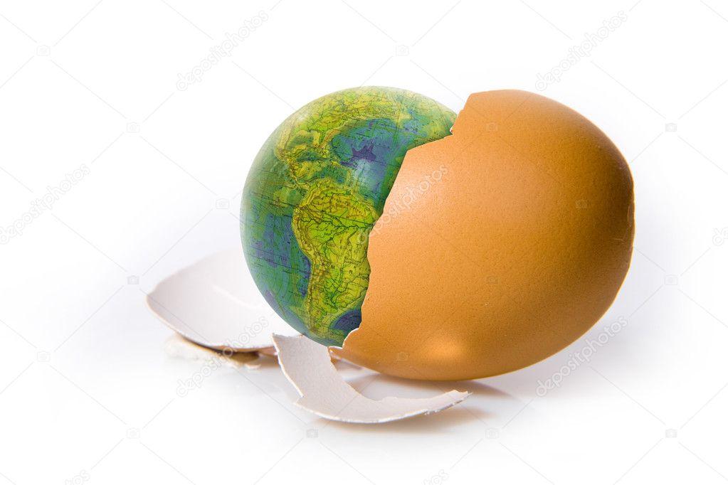 Shell egg on white