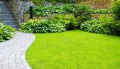 Fotografie zahrada
