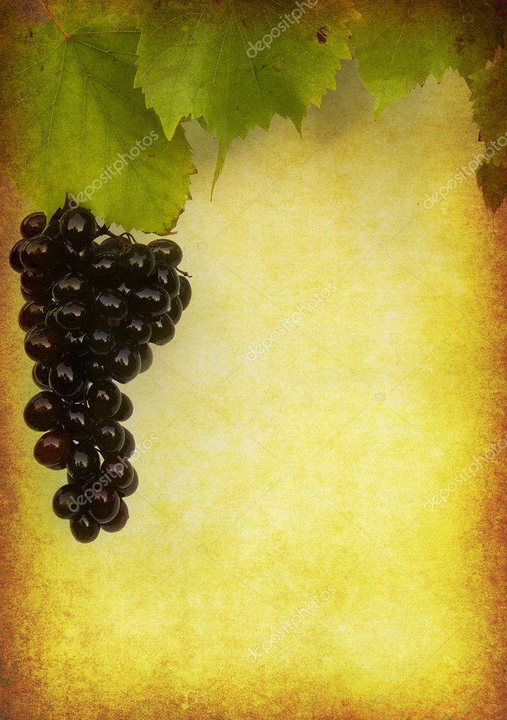 Wine label background