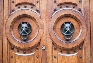 Door with a wolf head
