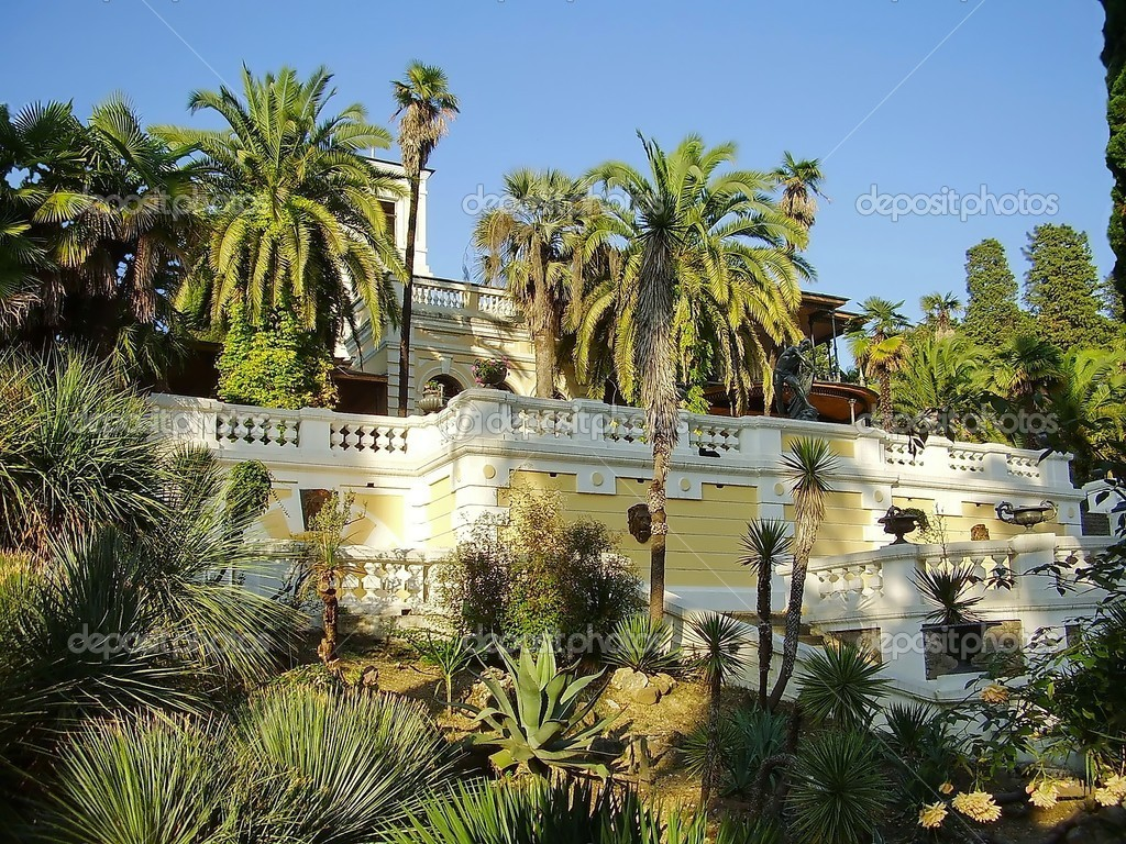 Mansion with palm trees