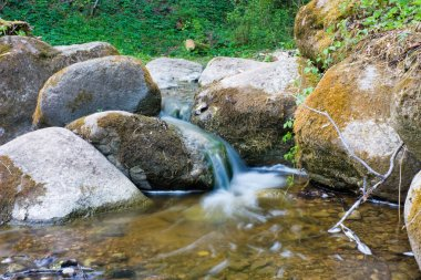 Forest Stream, blurred in motion