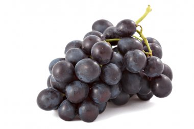 Bunch of black grapes isolated