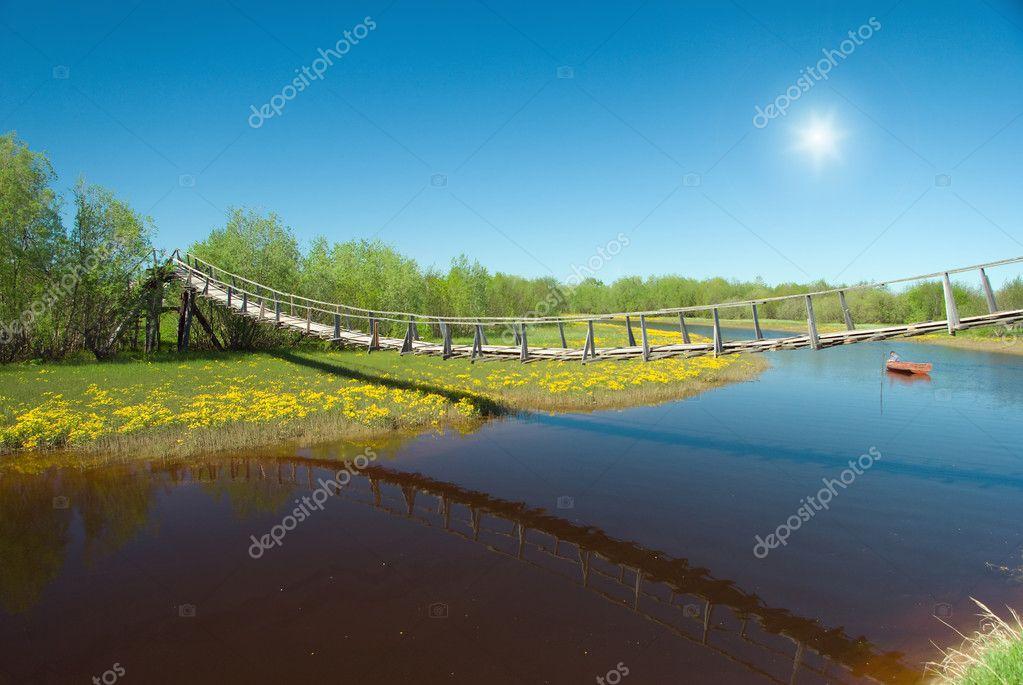 Narrow rope pedestrian bridge