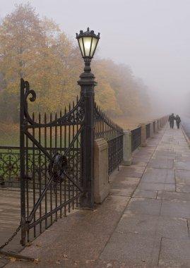 Gate streetlight in fog