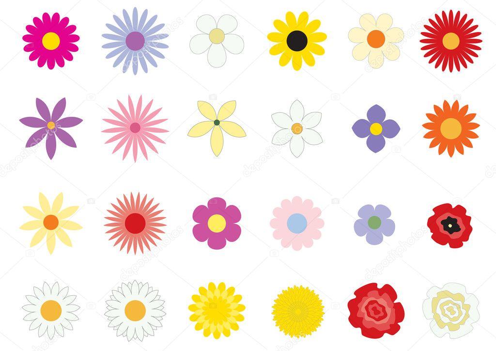 Flowers_basic