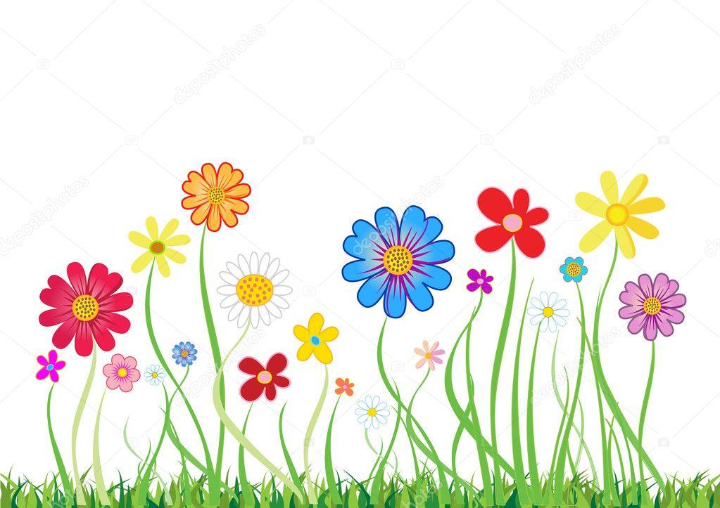 Hermosas Flores Dibujadas Sobre Fondo Blanco