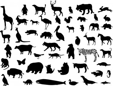 Collection of animal silhouettes. Vector