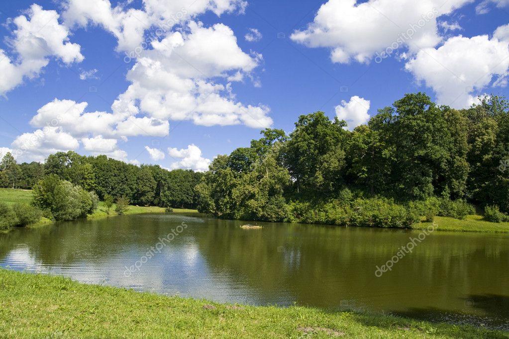 Summer scenery